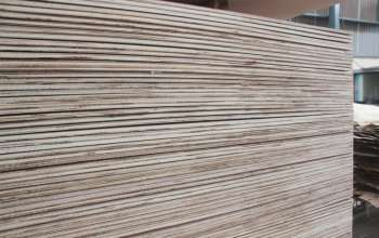 ab-plywood-2