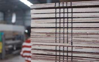 ab-plywood