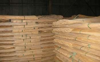 eucalyptus-core-veneer-1