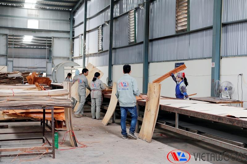 aa-plywood
