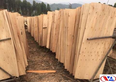 gỗ ván bóc