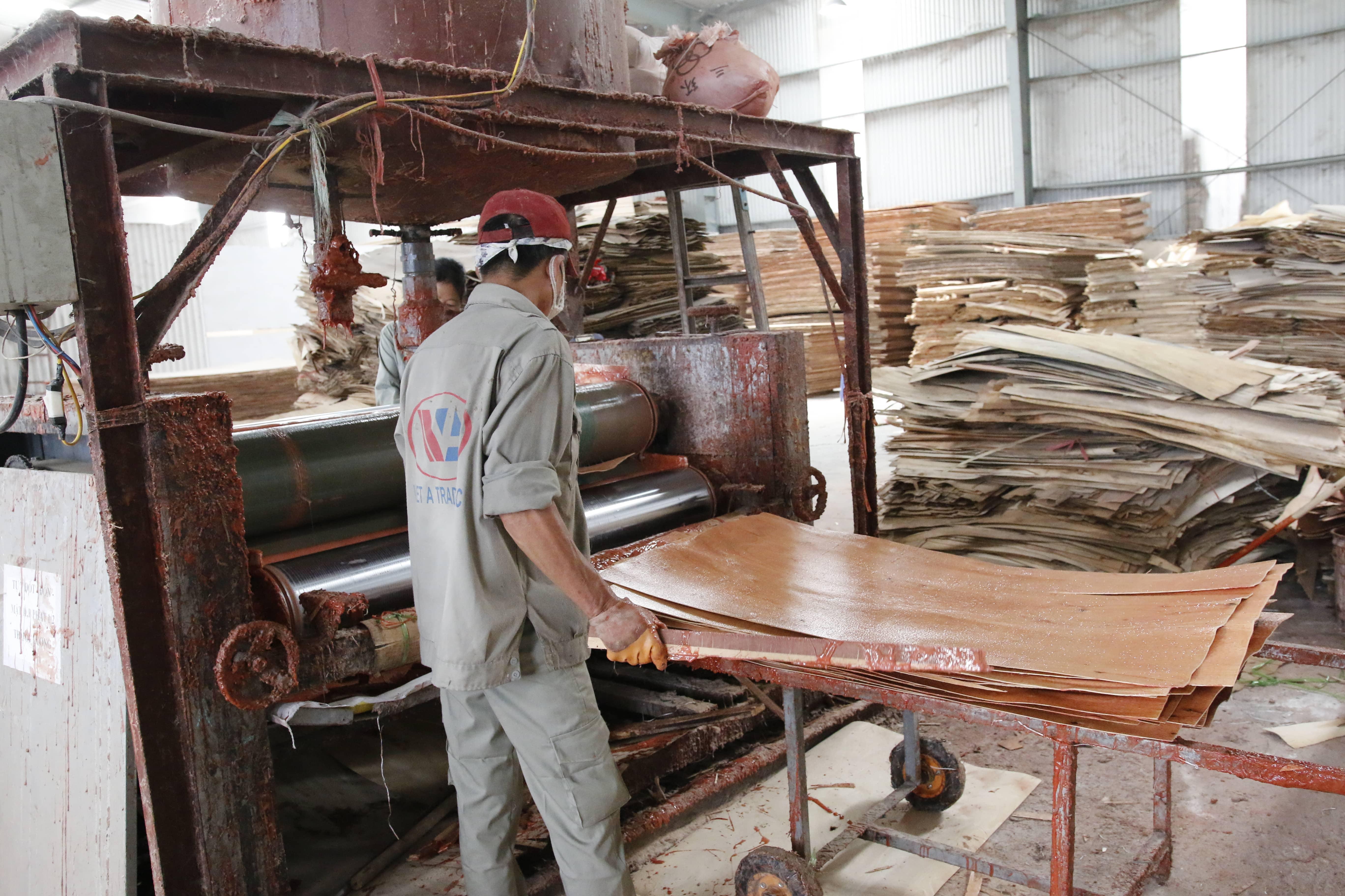 quy trình sản xuất ván ép coppha phủ phim